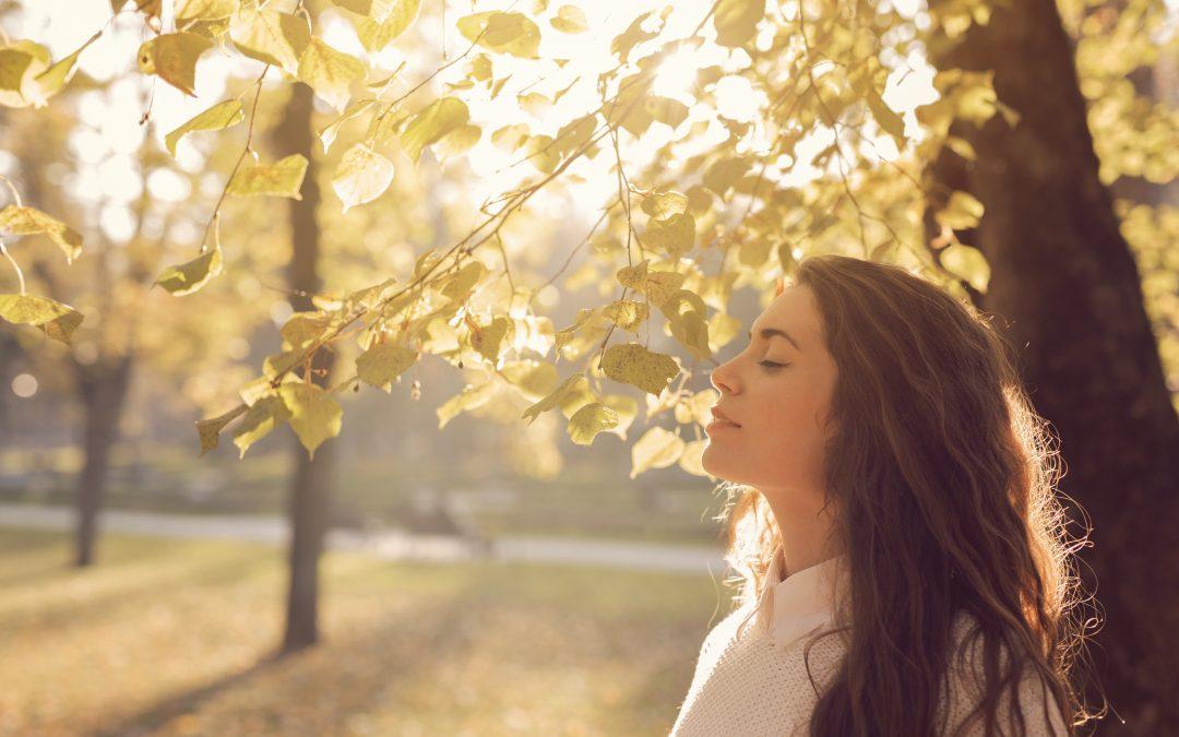 Evangelistic Prayer: Putting it on Your (My) List